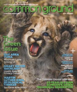 common-ground-lion