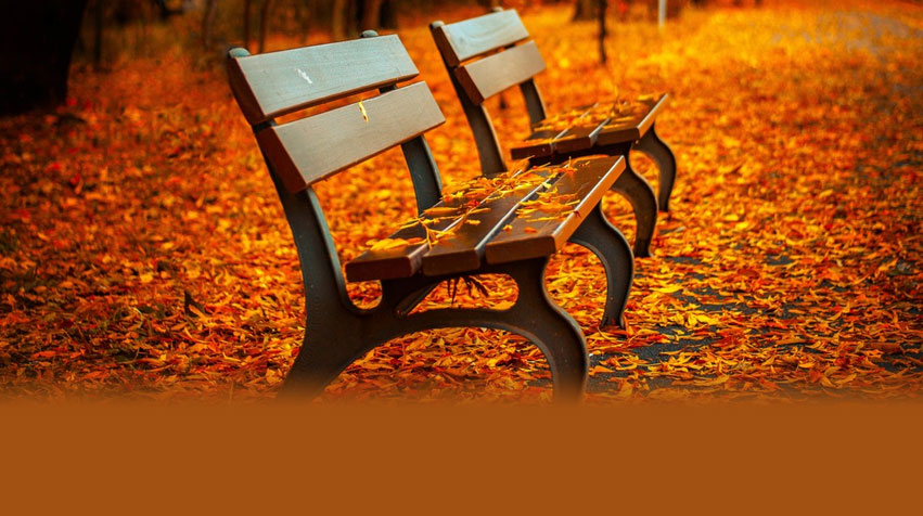 2016 Fall Invitation: Courting Emptiness